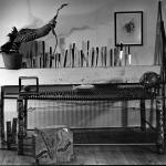 Installations & Performances