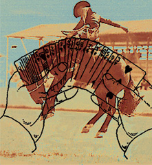 rodeo_riders
